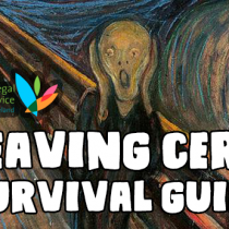 DYS Guide to Surviving The Leaving Cert